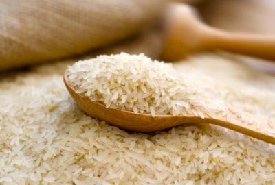 Terme Pirinci Nasıl Yetiştirilir